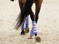 Intro to Squares and Counter-Canter