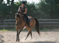 Using Circles to Develop Suppleness